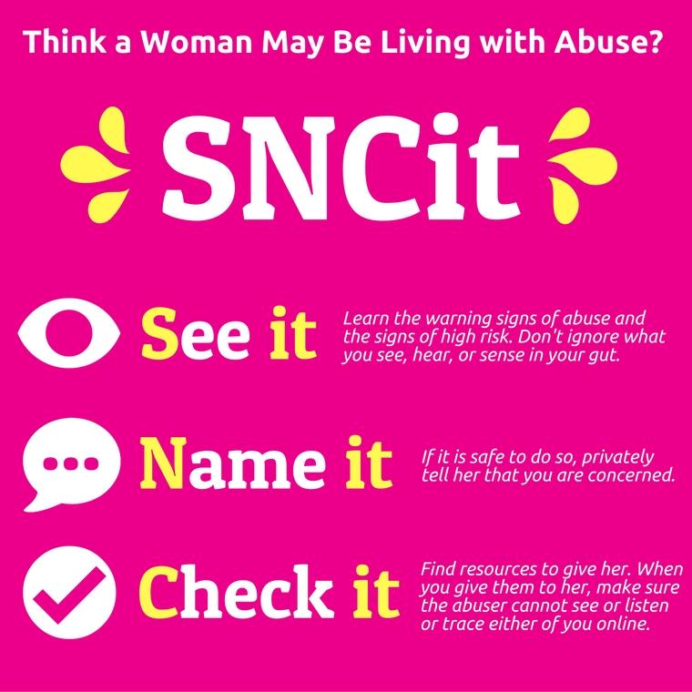 SNCit banner